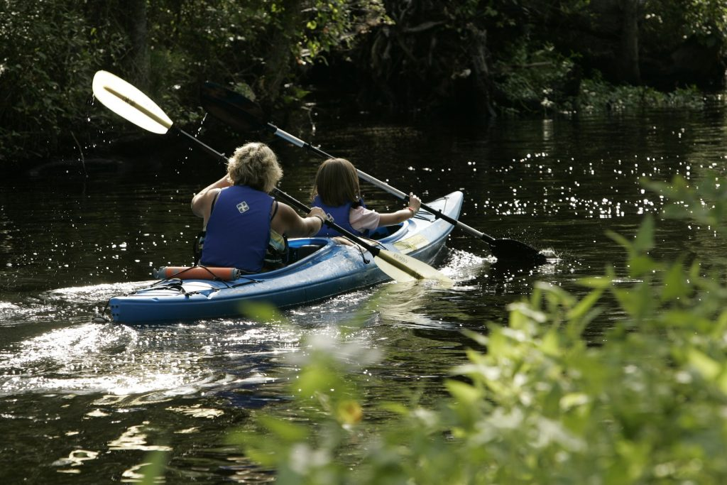 Sortie découverte environnement en kayak
